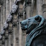 PARIS – CIDADE LUZ II