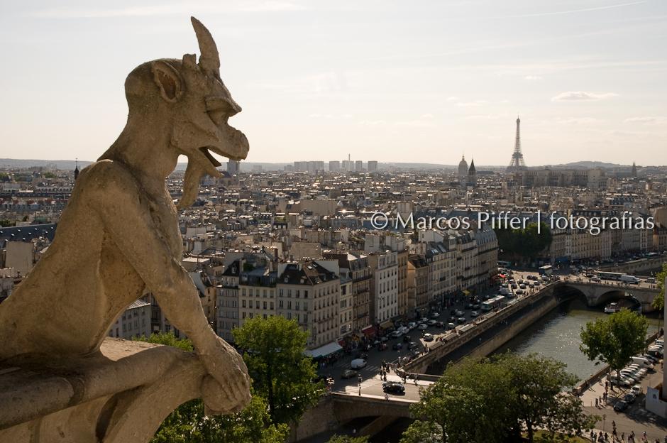 paris09-28_notre dame_DSC1913 Marcos Piffer