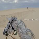 Jericoacoara | Entre dunas e lagoas