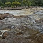 Parna Jaú | Rio Carabinani