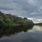 Anavilhanas | Ilhas e meandros