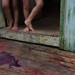 Anavilhanas | Comunidade Tiririca