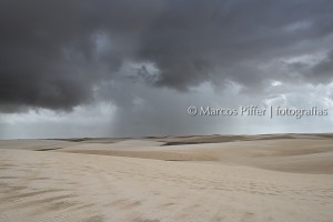 MarcosPiffer_MP89414